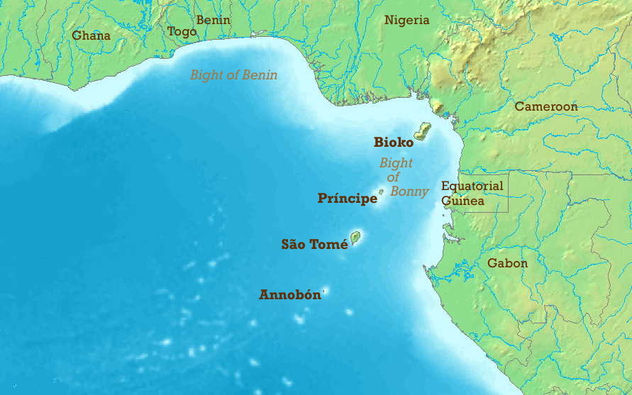 Cyprus shipping calls for more naval assets to tackle Gulf of Guinea piracy