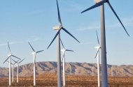 EY fulfills its commitment for carbon neutrality by the end of 2020
