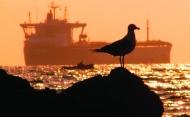 Sulphur cap, trade, regional crisis main concerns for shipping